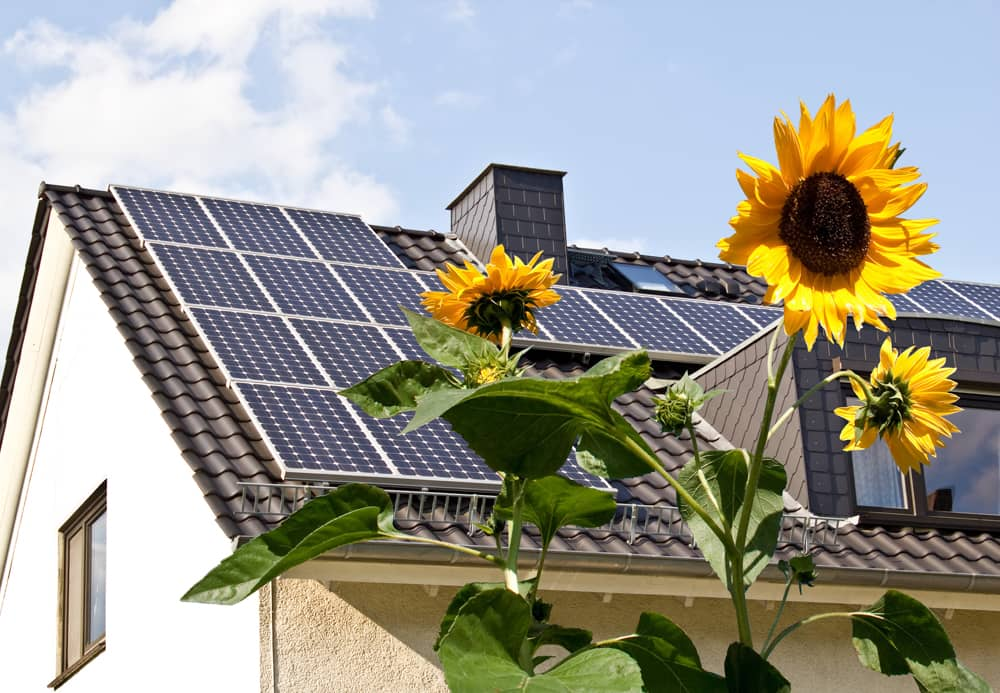 A photo of a house with solar panels and sunflowers in the foreground.